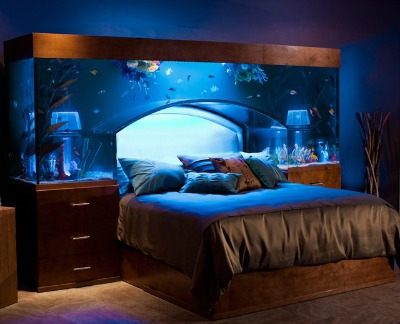 Aquarium Headdboard